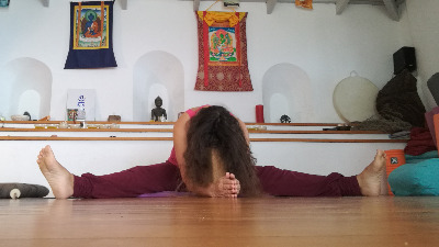 Emotional Detox Yoga